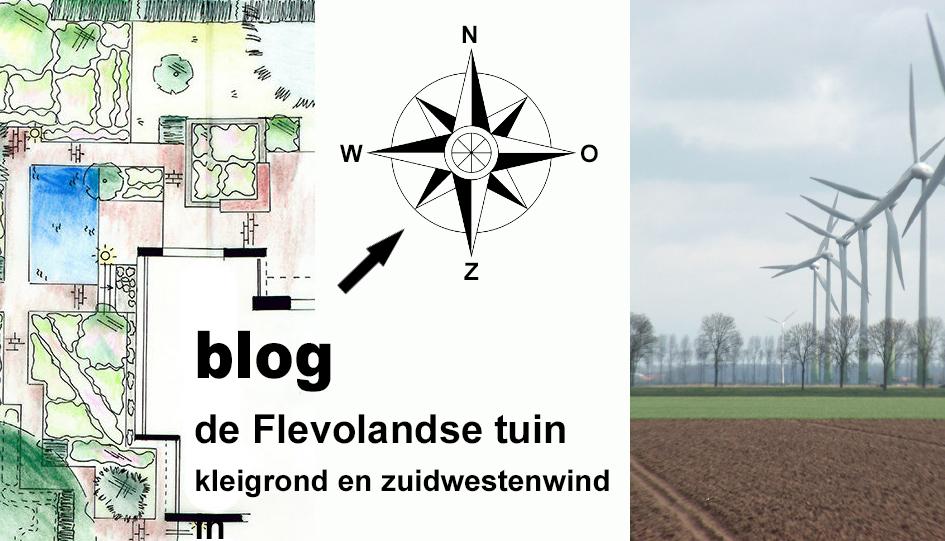 flevolandse tuin kleigrond en zuidwestenwind